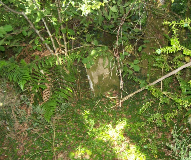 Le cimetière de Plainartige.  Tombe_11
