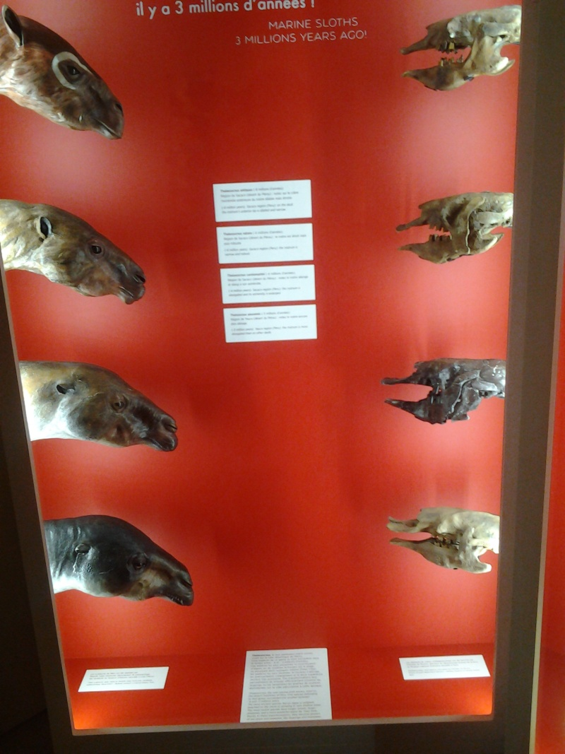 [inspi] Expositions / Musées / Salons... 2014-015