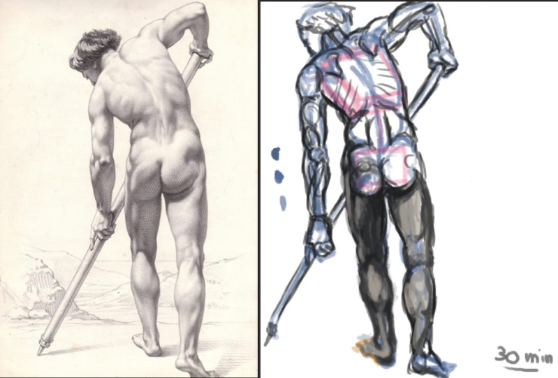 [defis] Lundi Anatomie - Page 4 Anat10