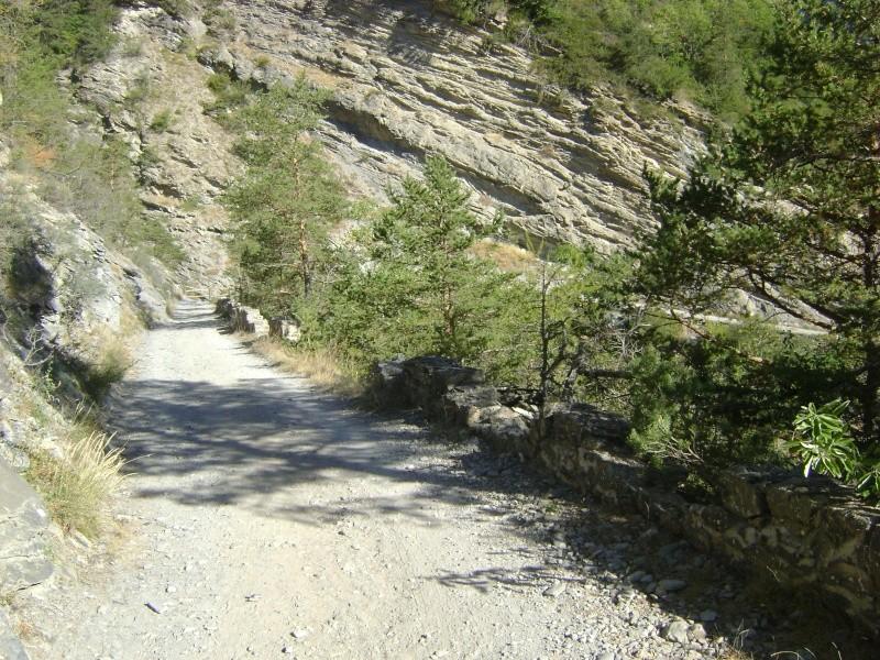 Mixte-Champsaur-Embrunais-Ubaye Dsc02011