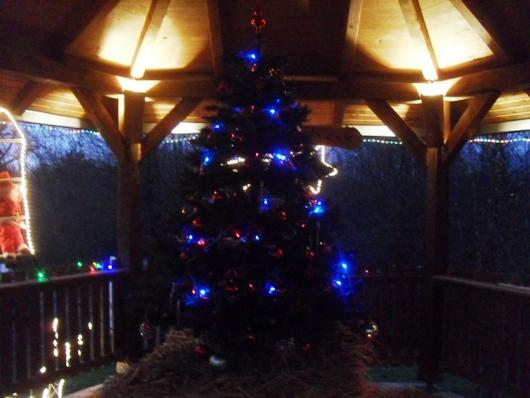 Višnjik u predbožićnom veselju Pictur33