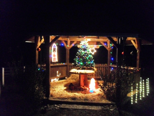 Višnjik u predbožićnom veselju Pictur35