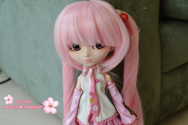 Mars 2014 : Pullip Vocaloid Sakura Miku Dsc_0120