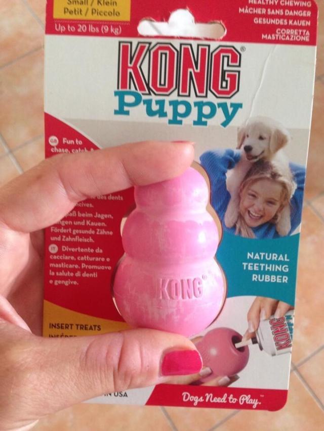 Les accessoires de vos animaux en particulier les chiens.  - Page 4 Image154