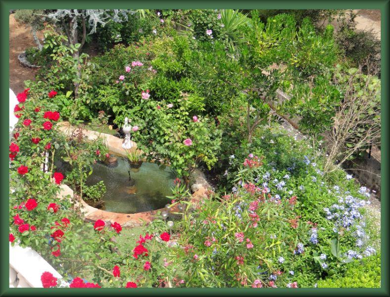 bassin enya 5175_r10