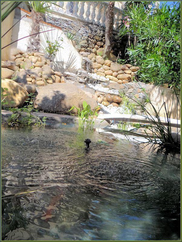 bassin enya Danive10