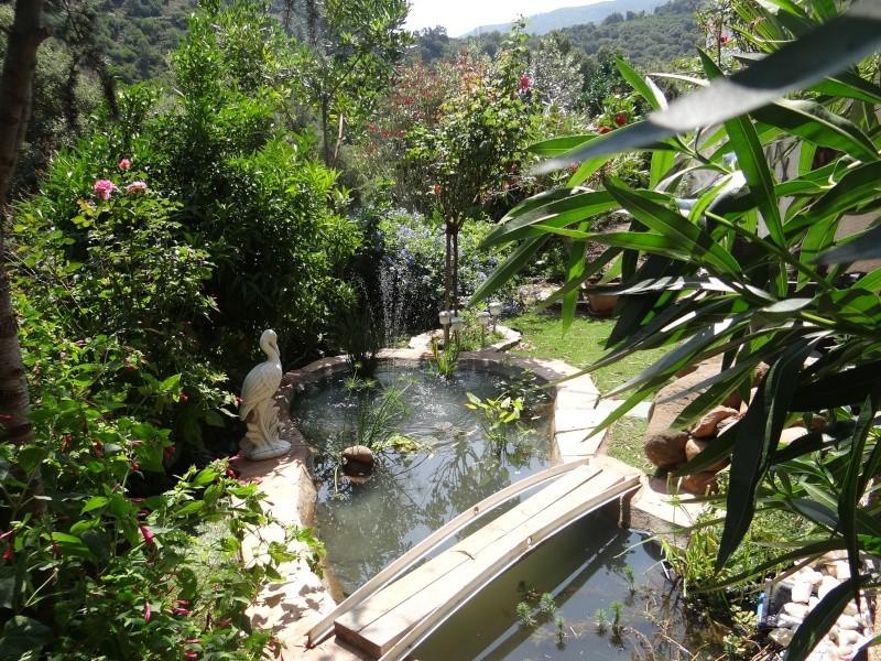 bassin enya Dsc04910