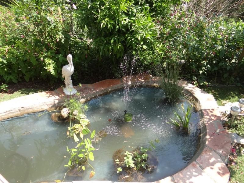 bassin enya Dsc04912