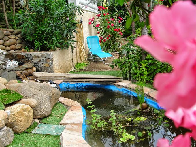 bassin enya Dsc07616