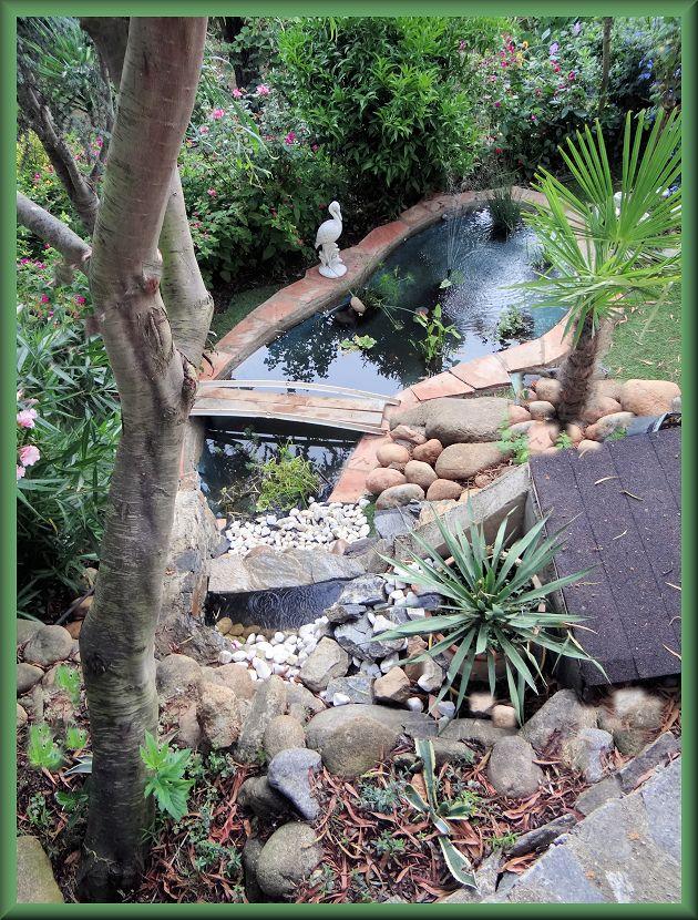 bassin enya Vue_du10