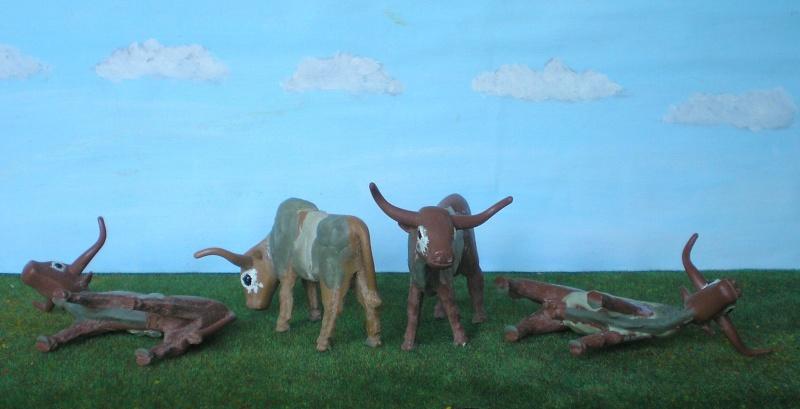 Meine Longhorn-Herde wächst - Seite 2 065g3a10