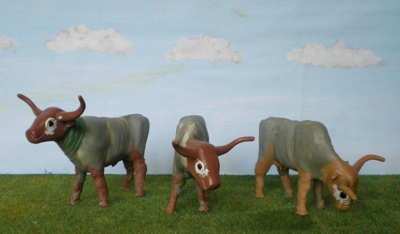 Meine Longhorn-Herde wächst - Seite 2 065g3b10