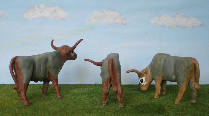 Meine Longhorn-Herde wächst - Seite 2 065g3b11