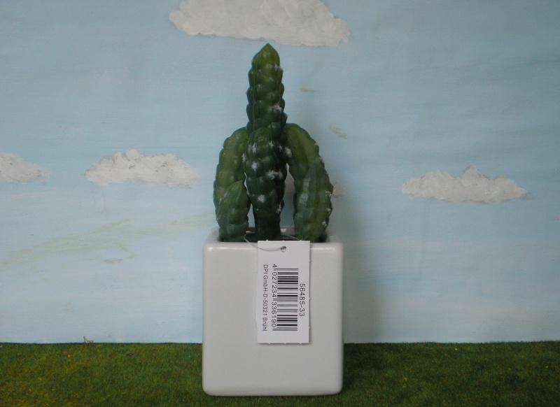 Preiswertes Material zur Pflanzengestaltung Dpi_mi11