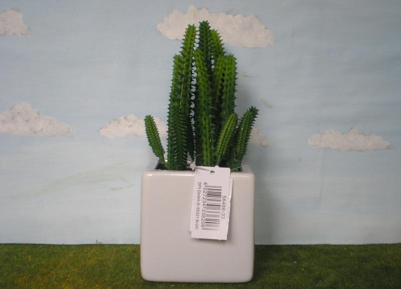 Preiswertes Material zur Pflanzengestaltung Dpi_mi16