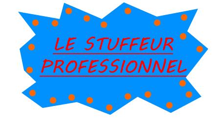 Le stuffeur professionnel de la guilde Stuff_10