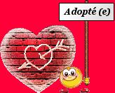 Mardi 15 juillet ADOPTION DE GRANT 40372118