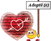 ADOPTION DE ZINA Dite RAYPONCE 40372143