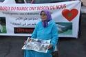 Sit-in en faveur des animaux de Marrakech Maroc 10268610