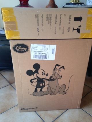 Disney Store Poupées Limited Edition 17'' (depuis 2009) - Page 5 Img_1619