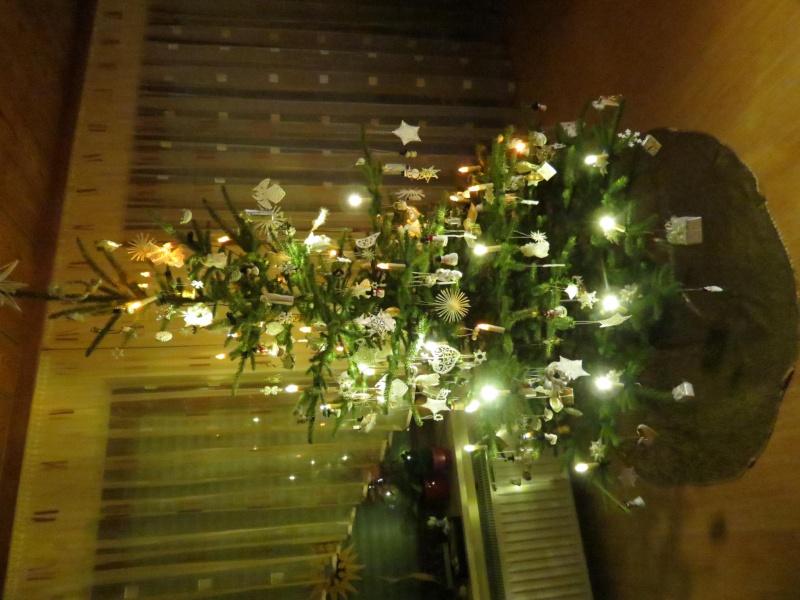 Unser Tannenbaum Img_0024