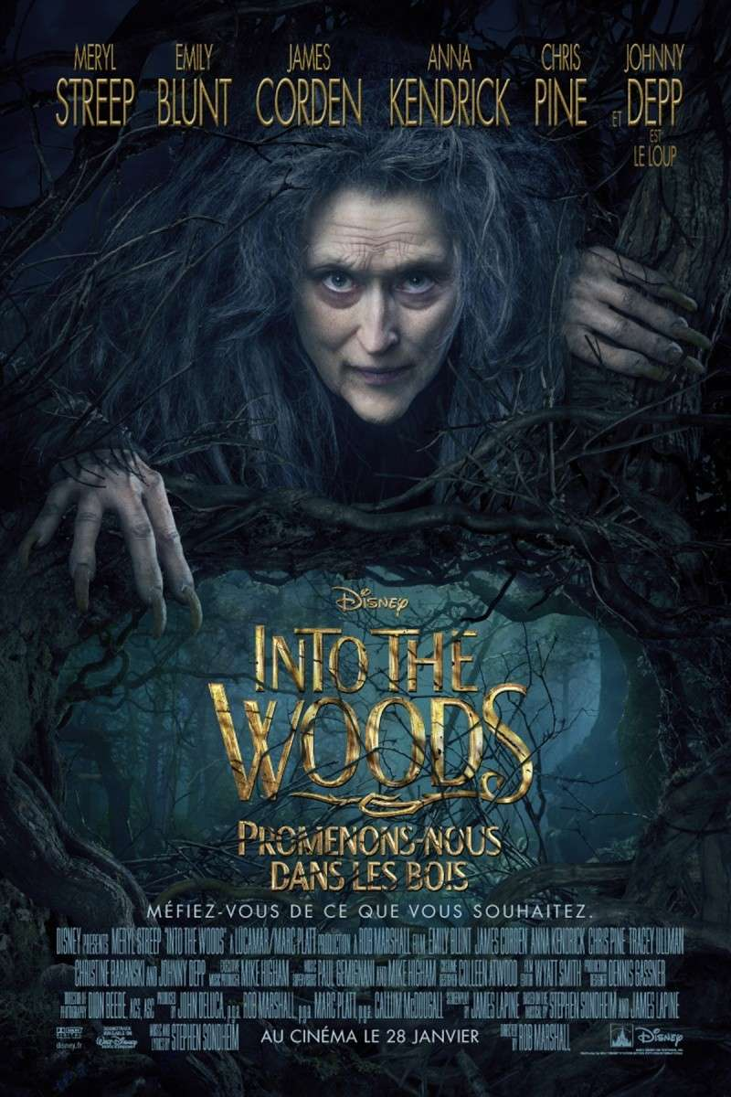 [Disney] Into the Woods - Promenons-Nous dans les Bois (28 janvier 2015) - Page 3 20276810