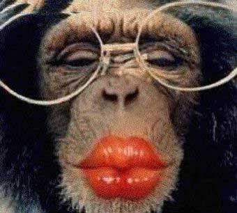 Ma recette perso de baume pour les lèvres .. Singeb10