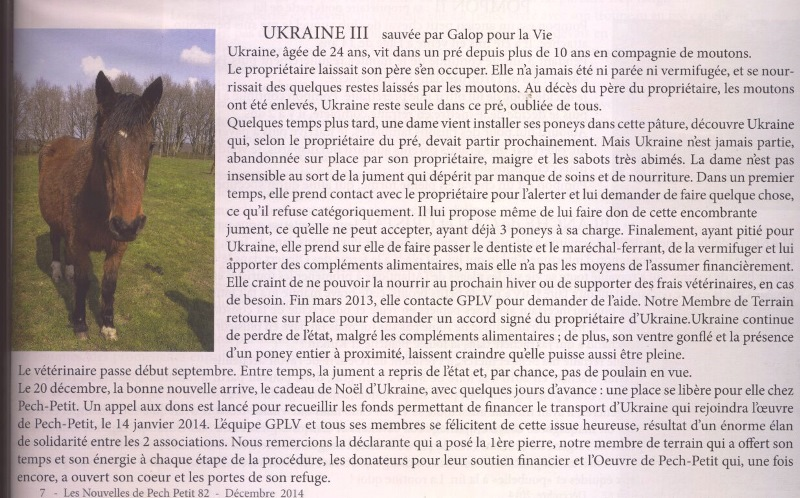 UKRAINE - ONC Selle née en 1987 - accueillie en janvier 2014 chez Pech-Petit - Page 2 Ukrain12