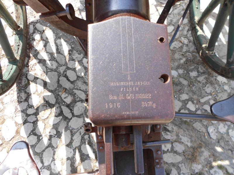 Canon de campagne à Ripatransone - Italie Dscn0615