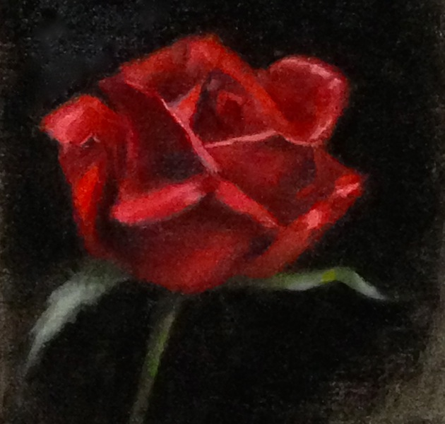 Painting #90: A reluctant red rose Red_ro10