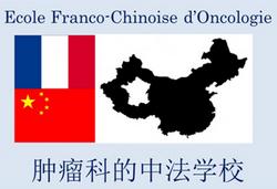 Wuhan :  formation à l'Ecole sino-française d'oncologie du 15 au 17 octobre 2014 Efco10