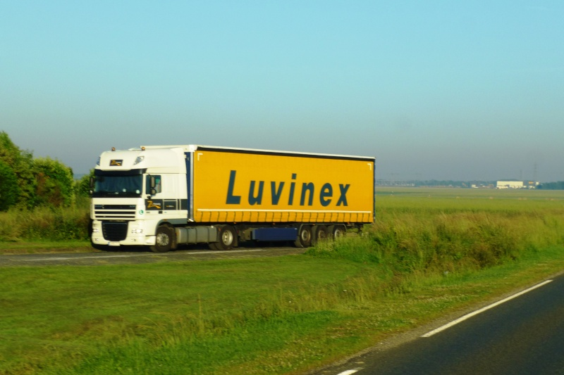 Luvinex (groupe Eutraco)(Aalter) Papy_714