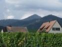 balade Vosges-Alscace en vue rando ascension 2015 Dscf3023
