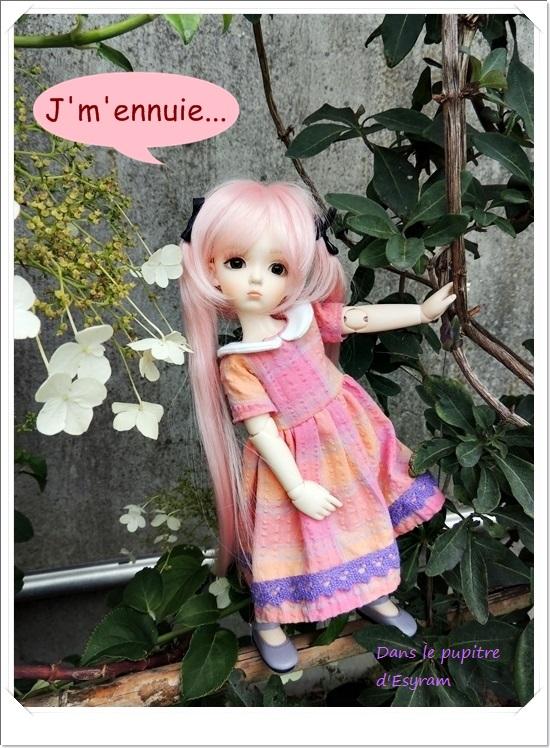 Dune et Violette, mes petites fées gourmandes page 2 054_du10