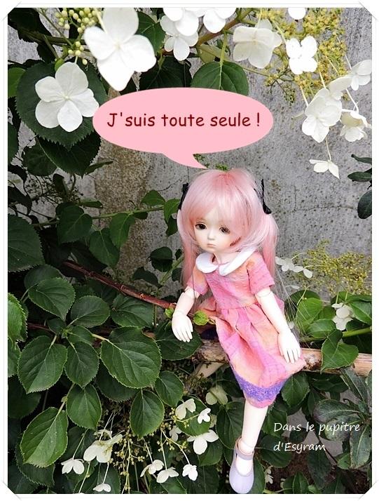 Dune et Violette, mes petites fées gourmandes page 2 054_du11