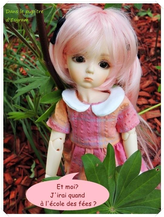 Dune et Violette, mes petites fées gourmandes page 2 054_du12
