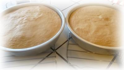 Gâteau à la mousse de pomme grenade Gateau26