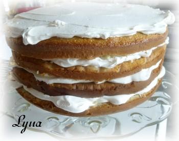 Gâteau aux pommes, mousse au caramel Gyteau16