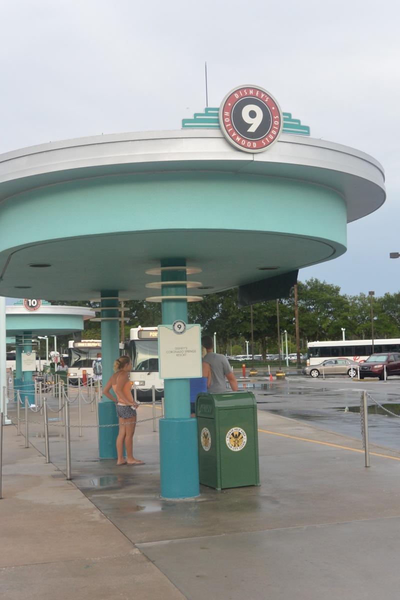 Le merveilleux voyage en Floride de Brenda et Rebecca en Juillet 2014 - Page 6 2616