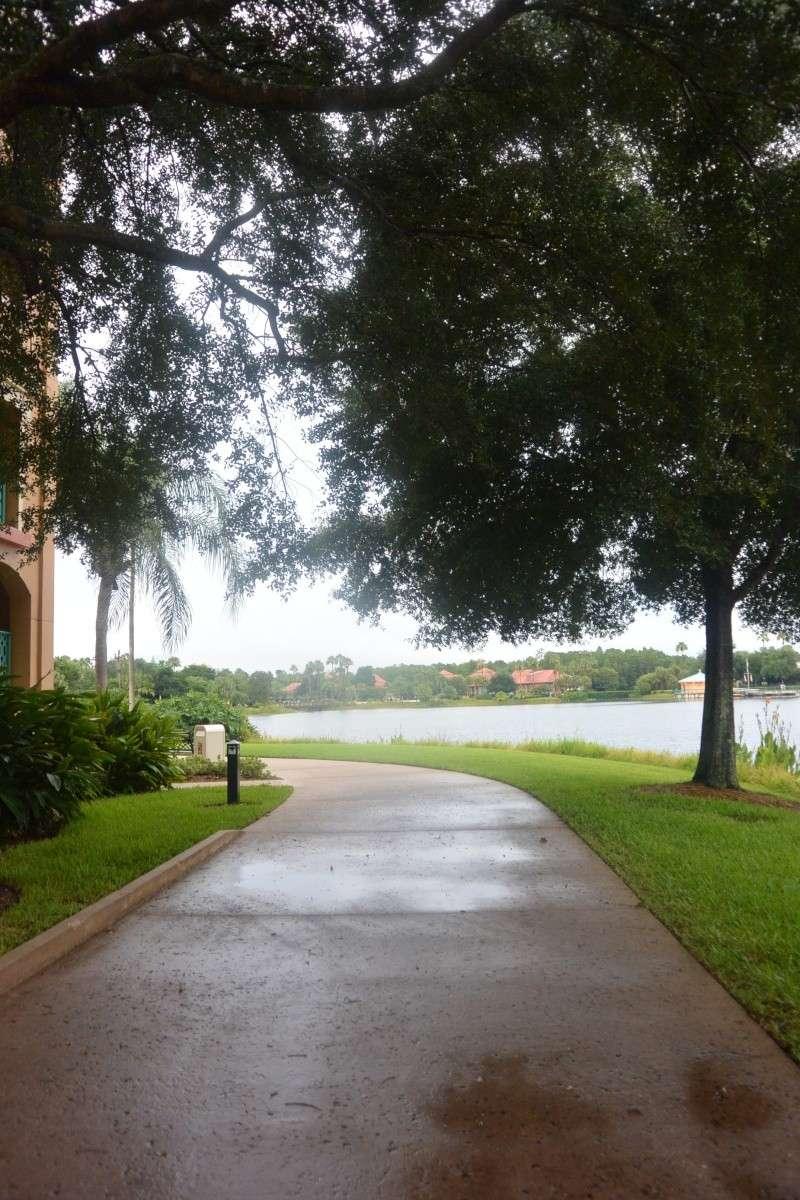 Le merveilleux voyage en Floride de Brenda et Rebecca en Juillet 2014 - Page 6 3016