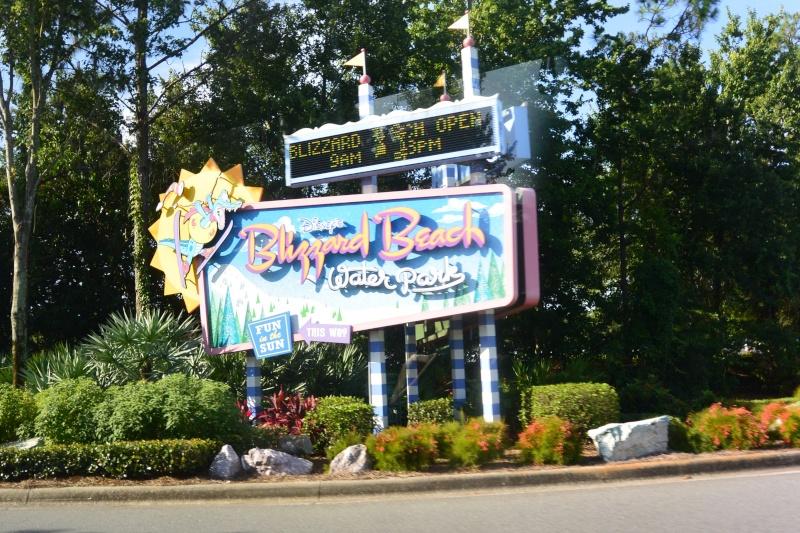 Le merveilleux voyage en Floride de Brenda et Rebecca en Juillet 2014 - Page 5 313