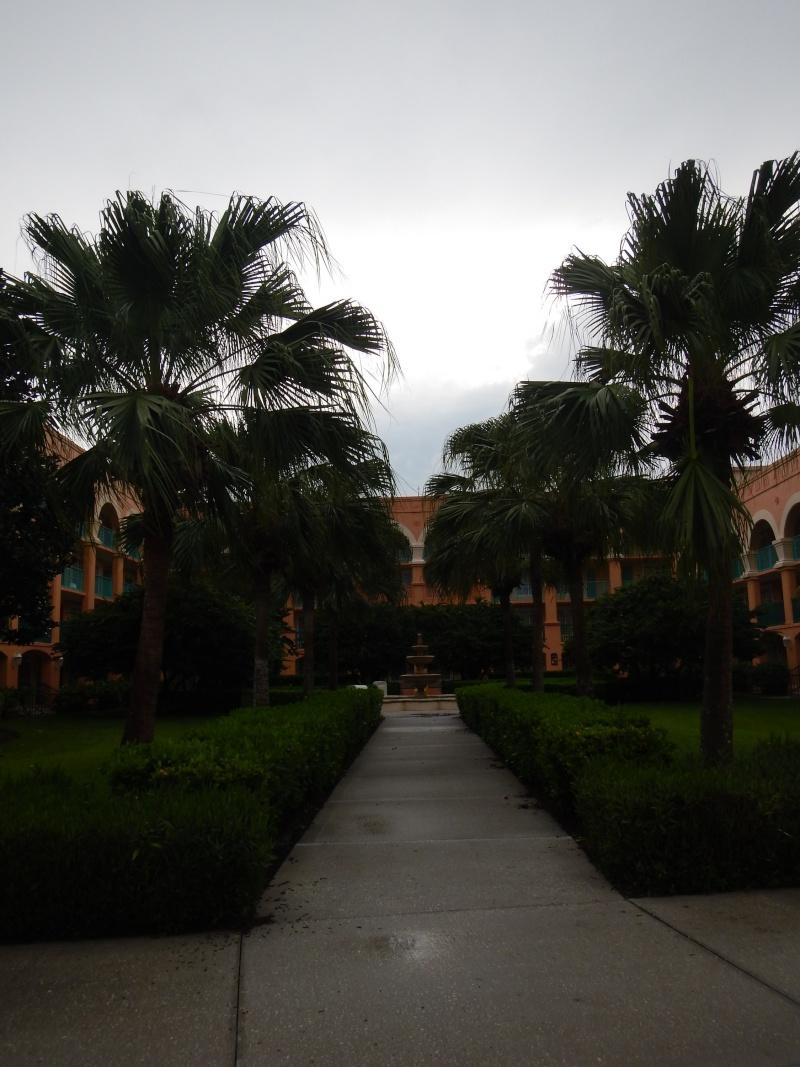 Le merveilleux voyage en Floride de Brenda et Rebecca en Juillet 2014 - Page 6 3816