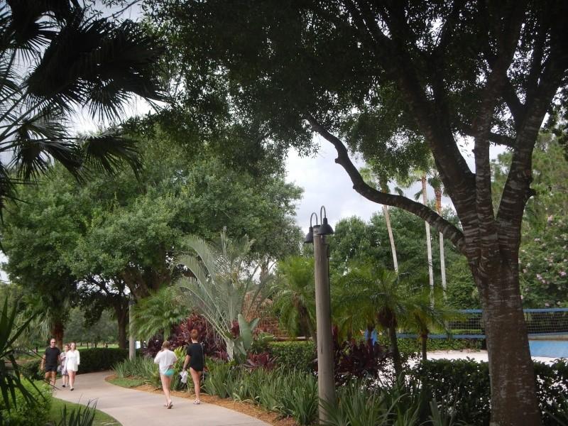 Le merveilleux voyage en Floride de Brenda et Rebecca en Juillet 2014 - Page 10 6918