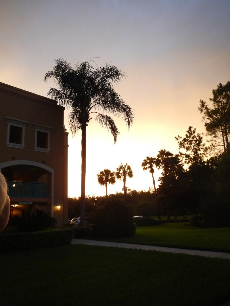Le merveilleux voyage en Floride de Brenda et Rebecca en Juillet 2014 - Page 6 7614