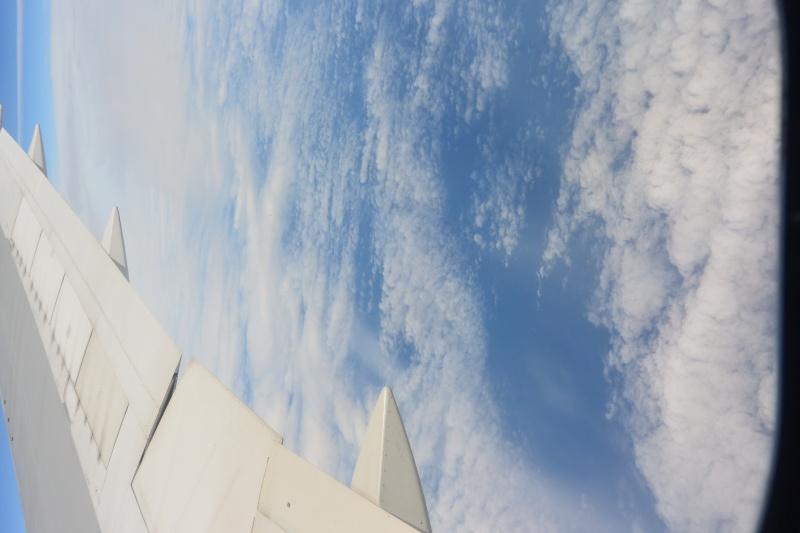 Le merveilleux voyage en Floride de Brenda et Rebecca en Juillet 2014 Dsc_6832
