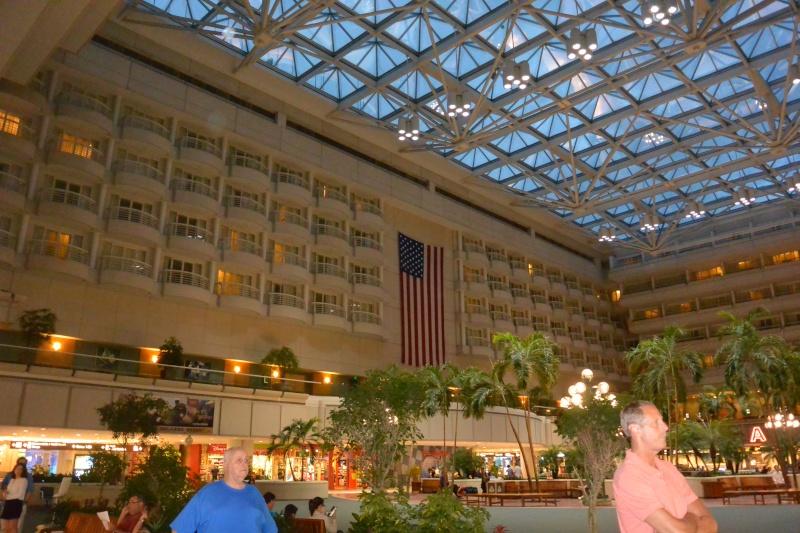 Le merveilleux voyage en Floride de Brenda et Rebecca en Juillet 2014 Dsc_6932