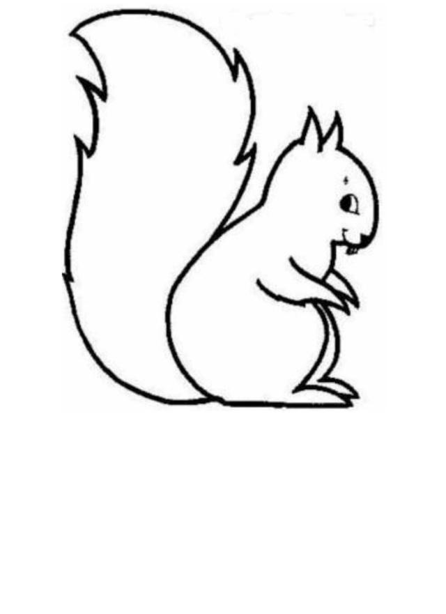 notre petit écureuil d'automne  Ecureu10