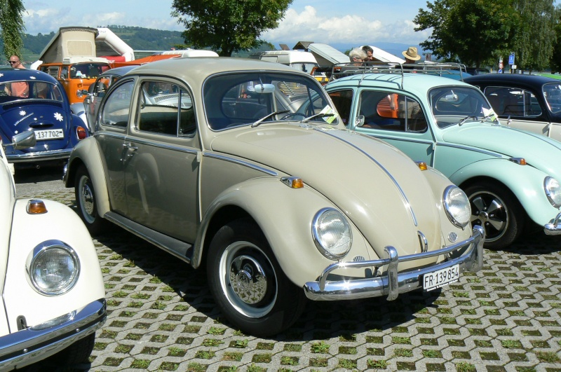 1er meeting international VW Vintage de Morat / Suisse  P1070021