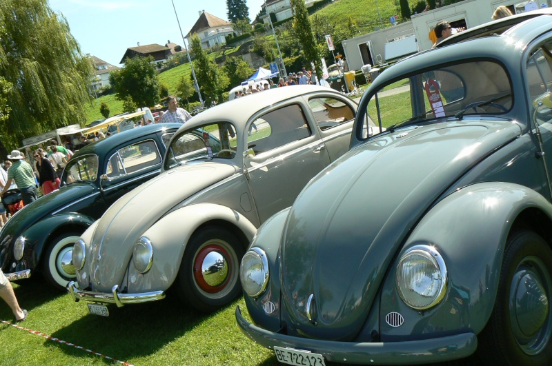 1er meeting international VW Vintage de Morat / Suisse  P1070112