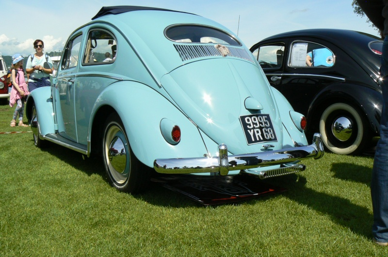 1er meeting international VW Vintage de Morat / Suisse  P1070216